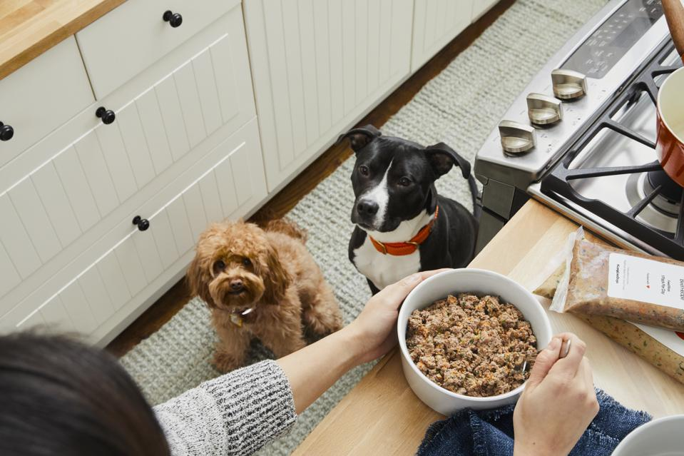 With Dog Obesity Becoming More Prevalent Is A Whole Food Diet The