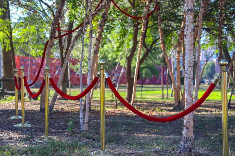 Gabriela Salazar, 'Access Grove, Soft Stand,' 2019. Image Courtesy the Artist and Socrates Sculpture Park. Photo by Scott Lynch.