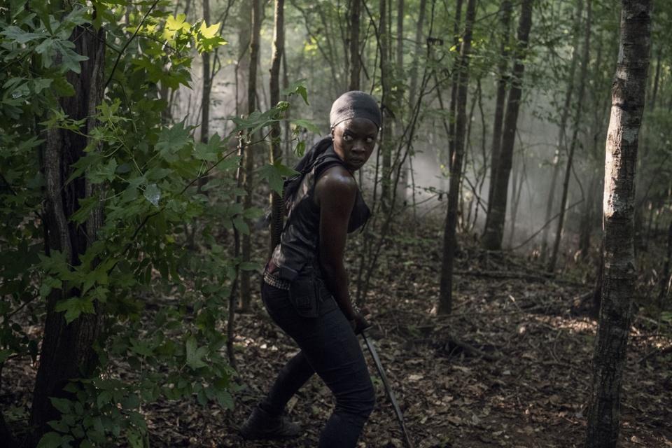 Michonne The Walking Dead Whisperers Negan