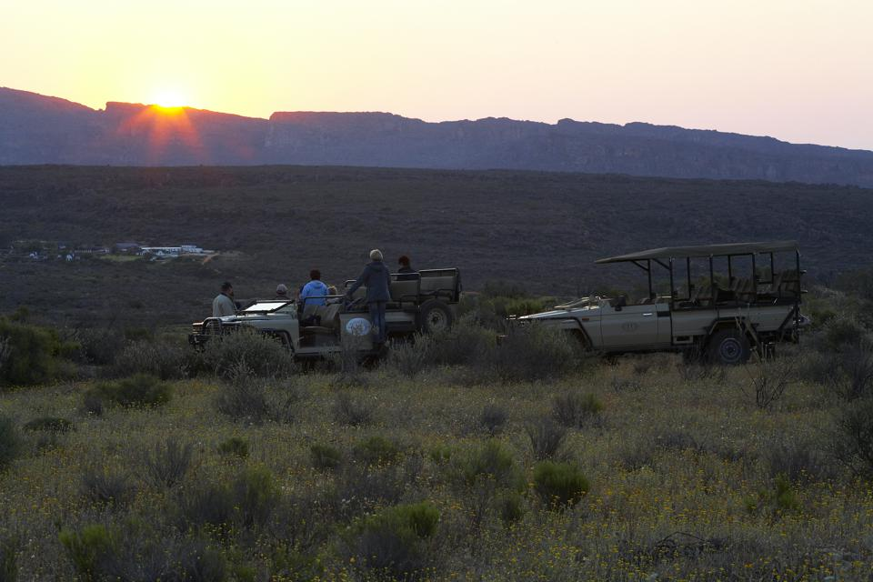 Bushman Kloof takes its guests out for nature drives several times a day including one at sunset (seen here).