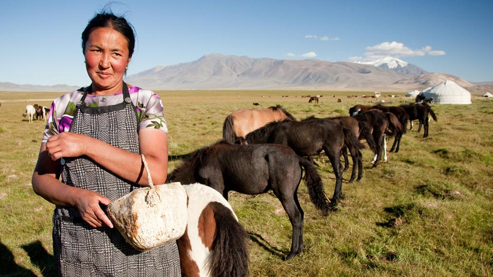 Mongolia  trip, Women's Adventure Travels
