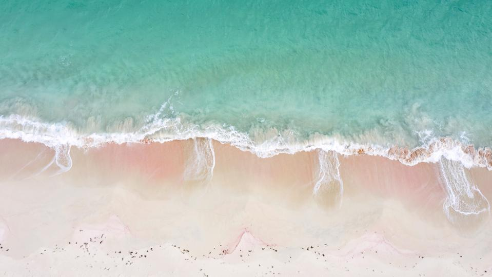 Pink Sand Beach in Antigua & Barbuda