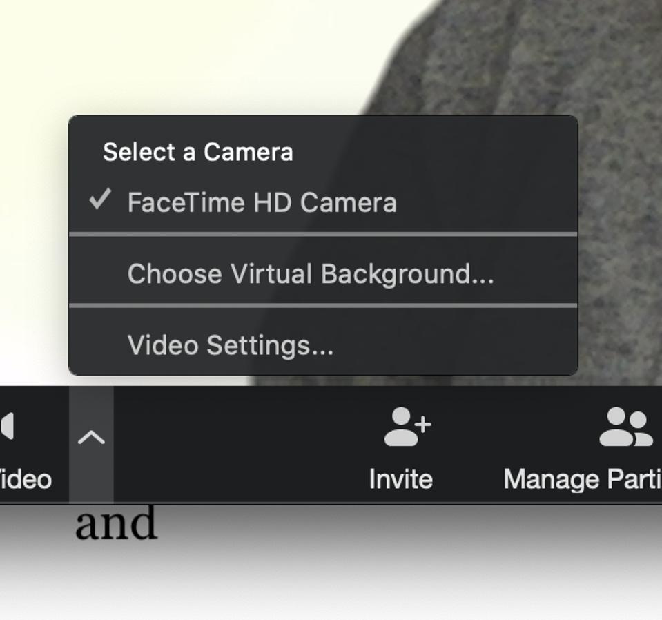Zoom screenshot - Choose Virtual Background