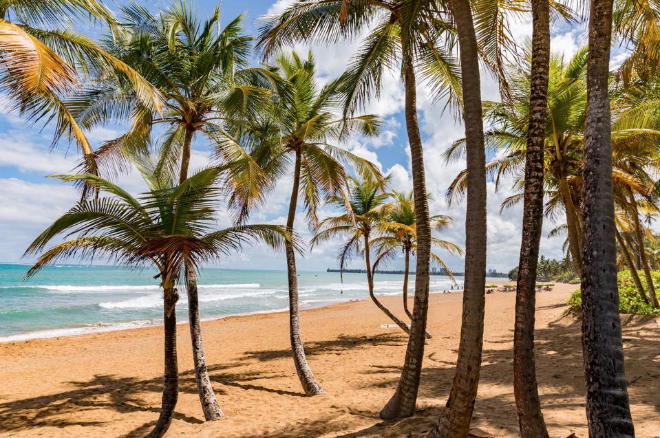 A beach in Puerto Rico