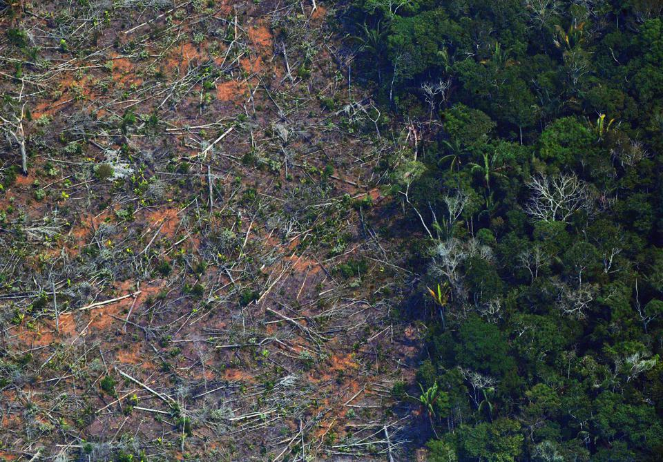 BRAZIL-AMAZON-DEFORESTATION
