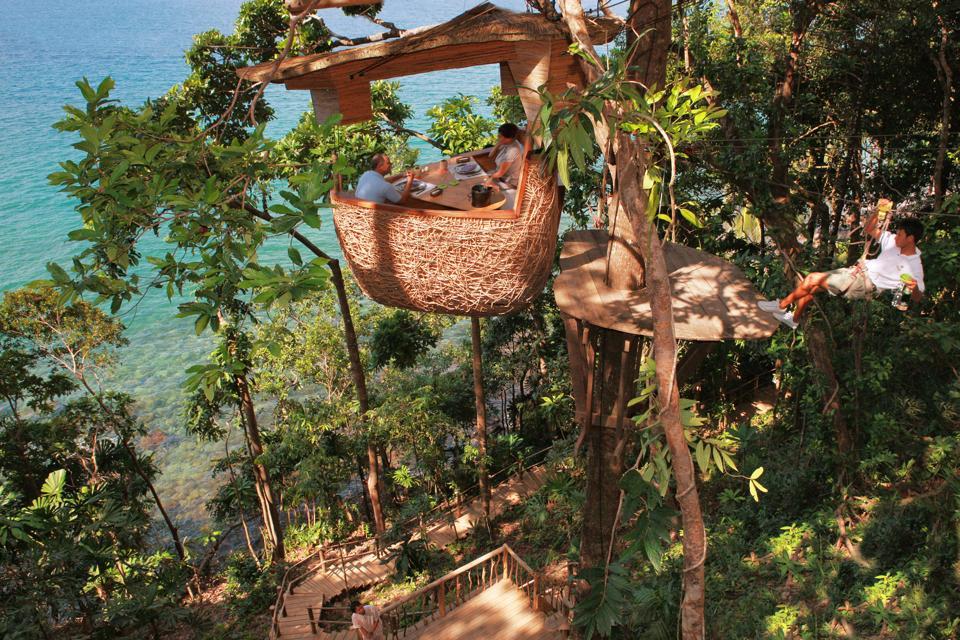 Treetop dining