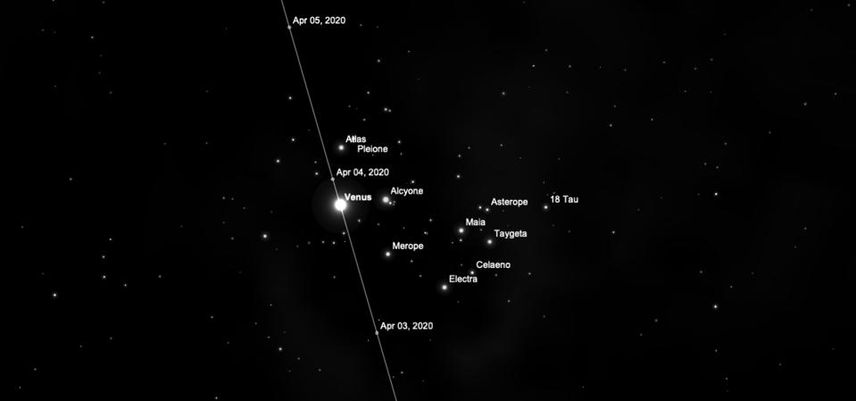 Venus in the Pleiades.
