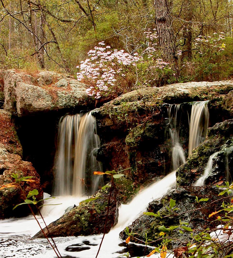 Broxton Rocks.  The Nature Conservancy,
