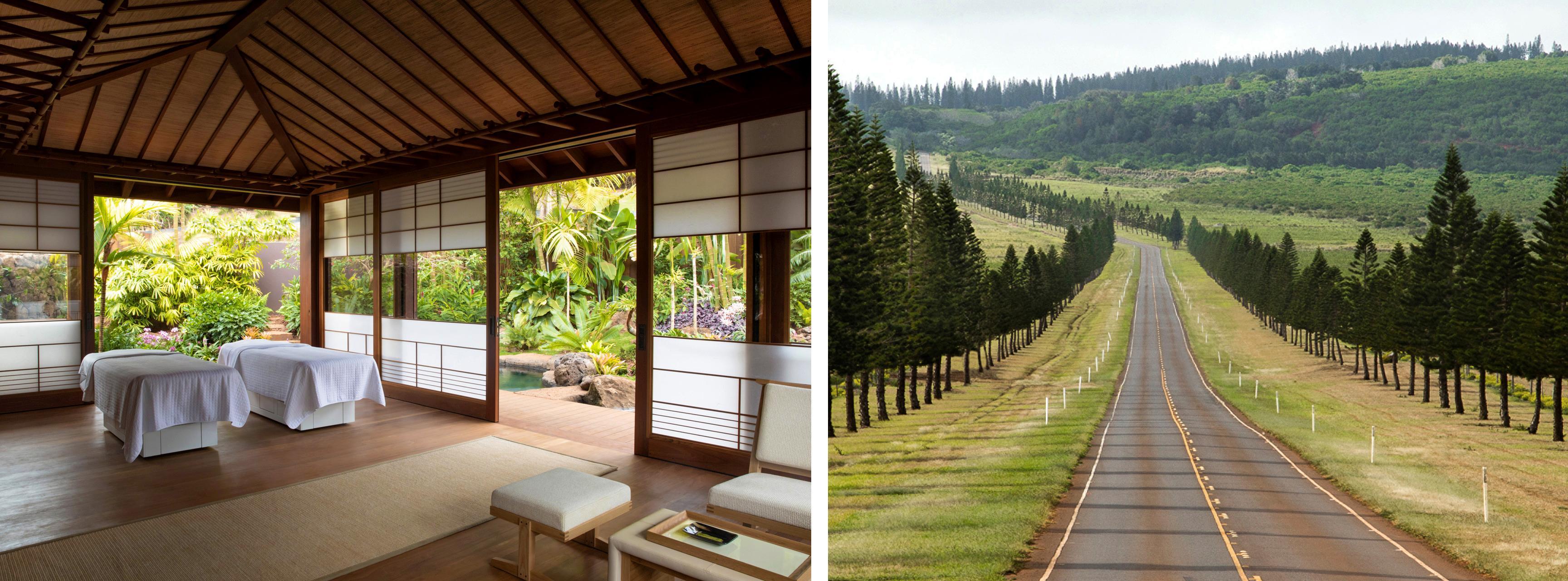 bertie-spa-road-ellison-sensei-spa-Lanai-Hawaii3-no-credit
