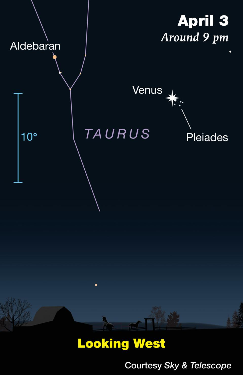 Friday sees Venus and the Pleiades in an apparent cosmic embrace.
