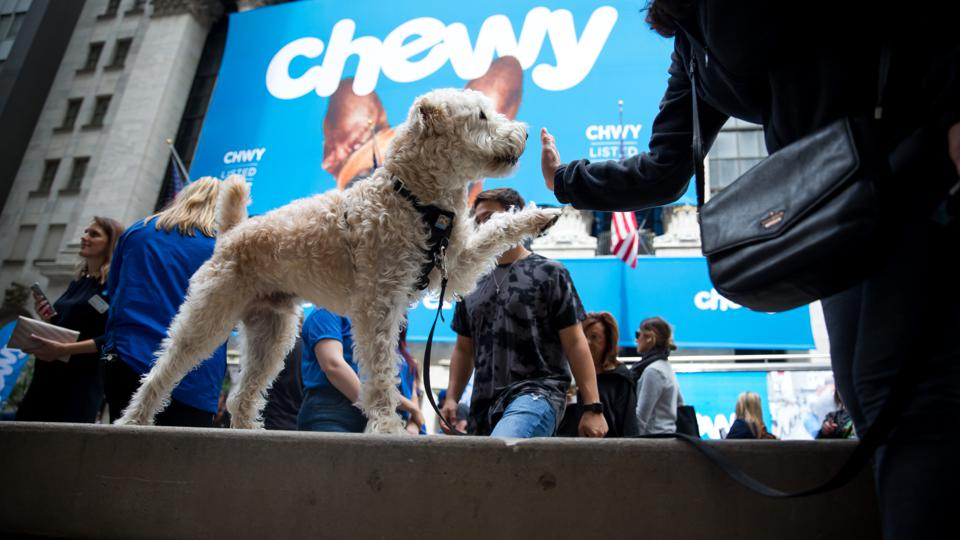 A small dog raises its paw and gives its owner a high-five in front of the New York Stock Exchange on the day of Chewy's initial public offering