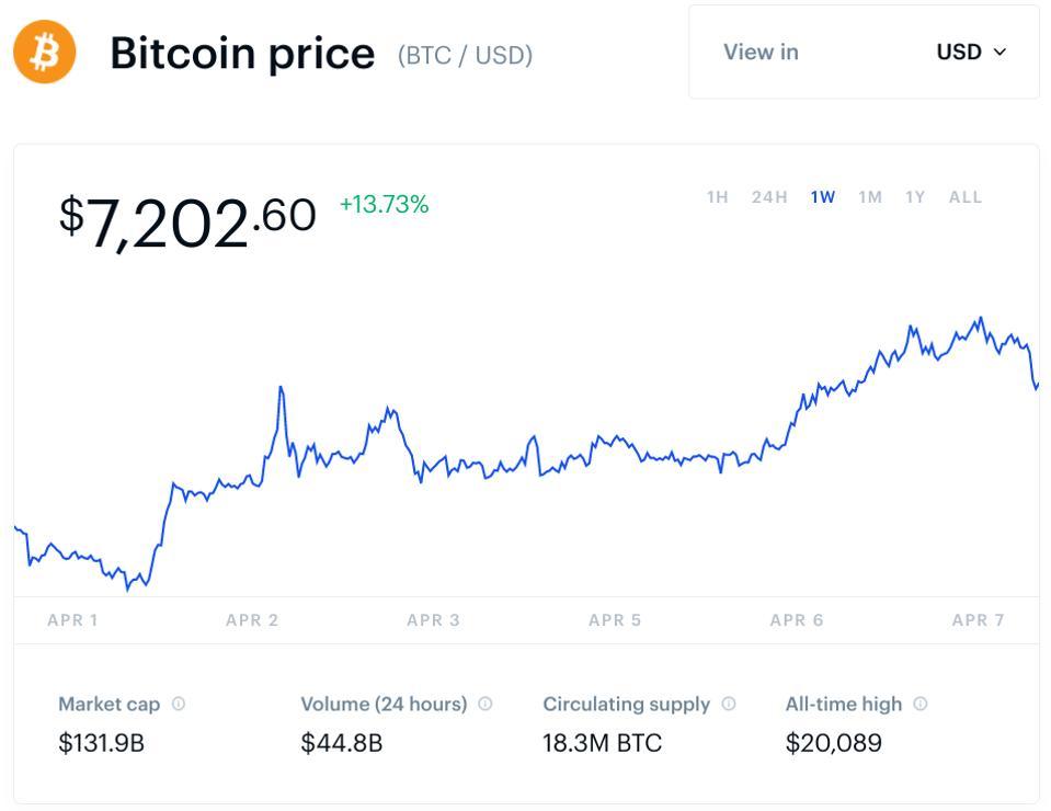 bitcoin, bitcoin price, bitcoin halving, bitcoin cash, bitcoin SV, crypto, chart