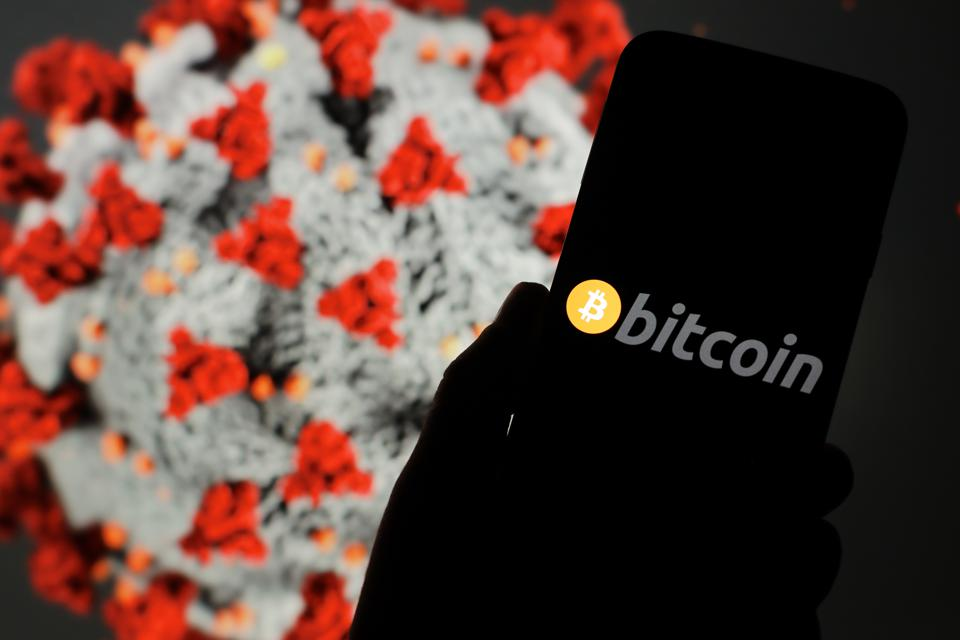 Bitcoin cryptocurrency scammers make less in coronavirus era.