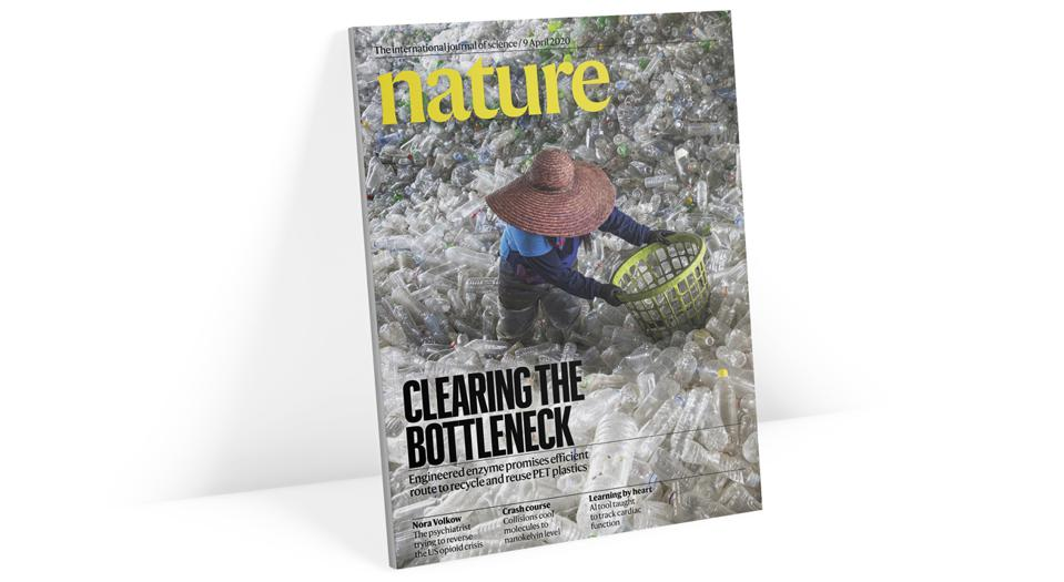 The April issue of Nature, where the article appears.