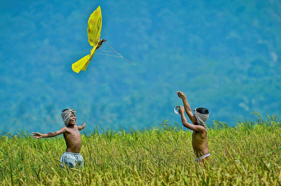Indonesian boys playing with kite in rice fields