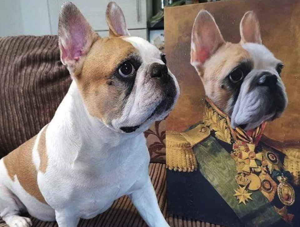 A pup with his Crown & Paw dog portrait