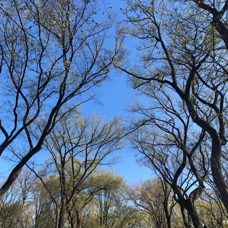 April-Sky-NYC