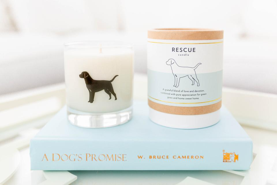 A rescue dog candle from Scripted Fragrances