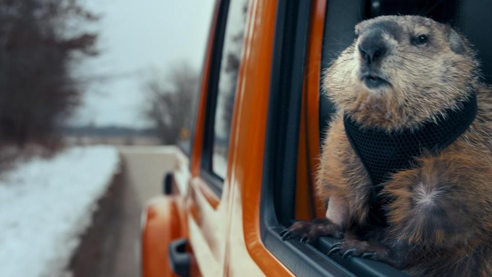 Jeep and ″Groundhog Day.″