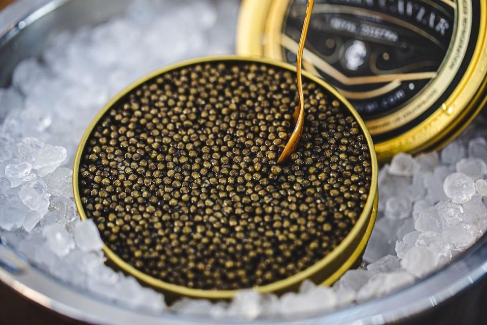 Imperia Caviar Kaluga Royal Ossetra Sturgeon Gourmet Provisions Elevate Home Cooking
