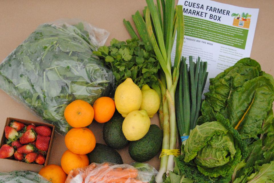 CUESA Farmers Market Box Produce Fruits Vegetables Gourmet COVID-19 Pickup Delivery