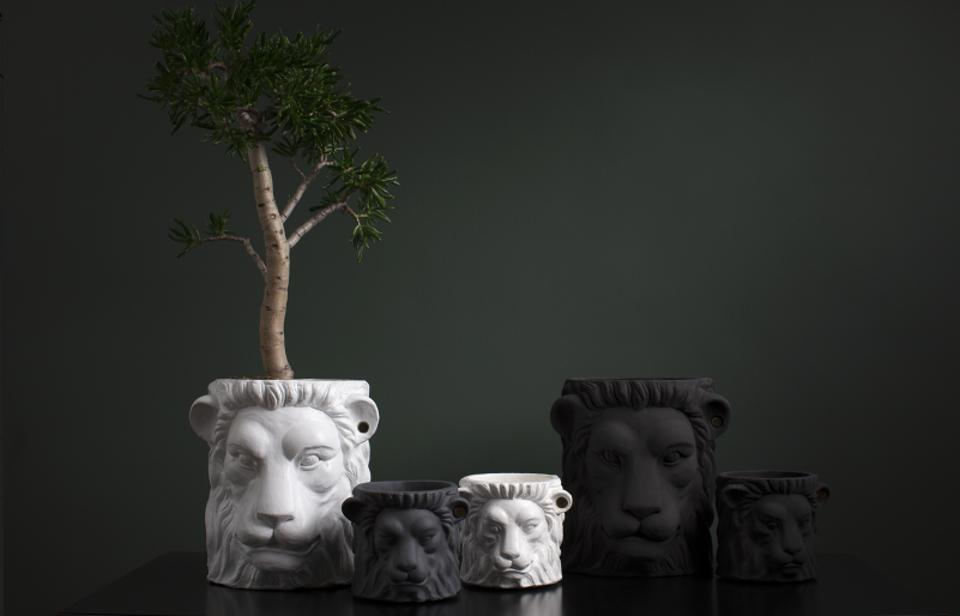 Lion pots from Garden Glory come in various sizes.