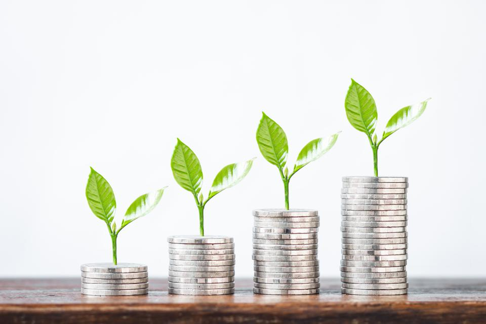Plant Growing On Stack Of Coins Against White Background