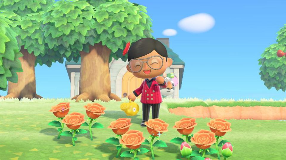 How To Crossbreed Hybrid Flowers In Animal Crossing New Horizons