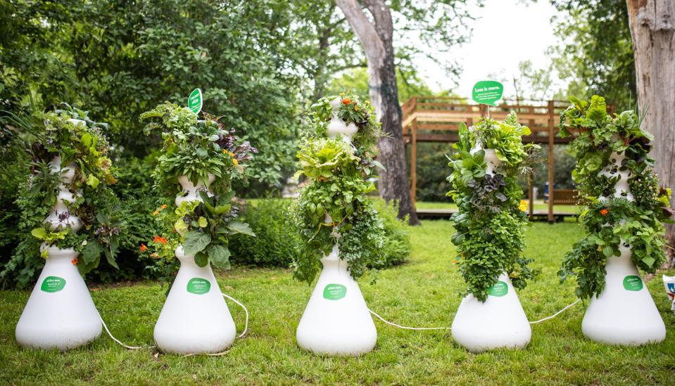 Lettuce Grow Farmstands full of vegetables
