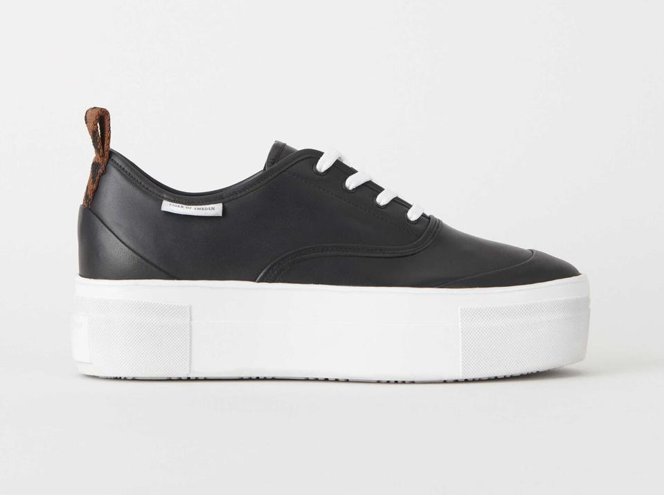 Stilobate Sneakers by Tiger of Sweden