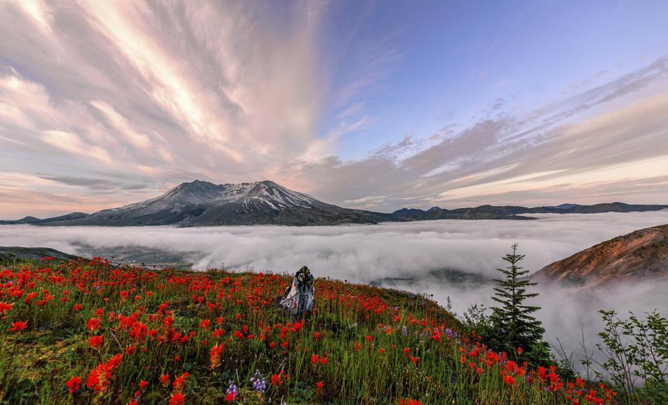 Sarah Alvarez, The Nature Conservancy Photo Contest Winner 2019