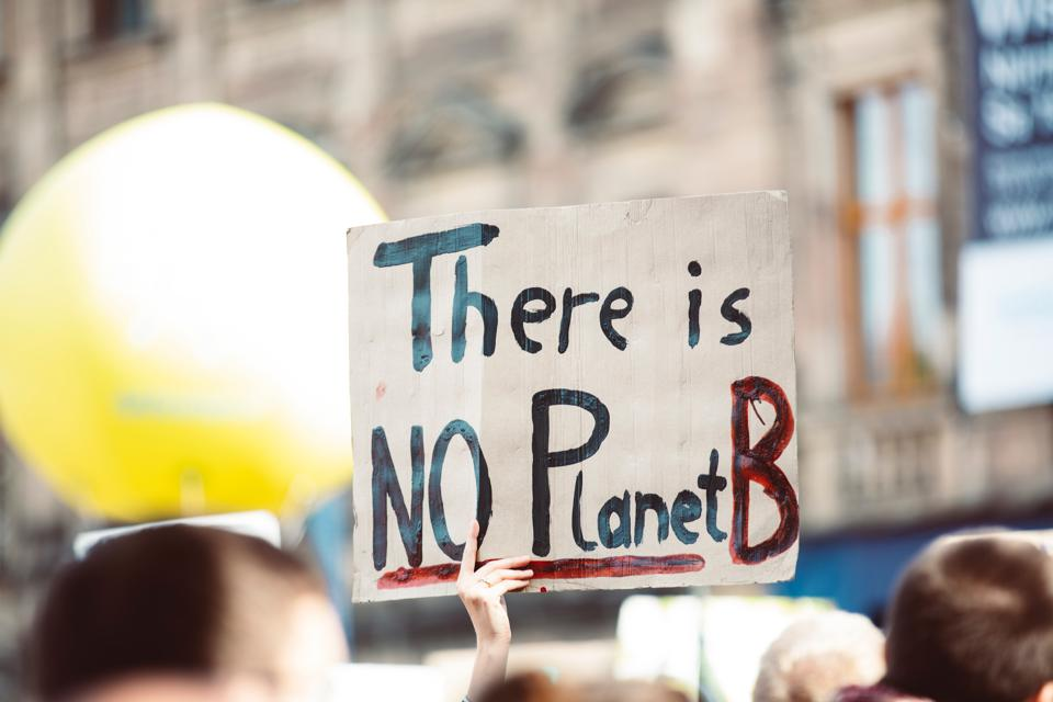 A climate crisis sign which says There is no Planet B