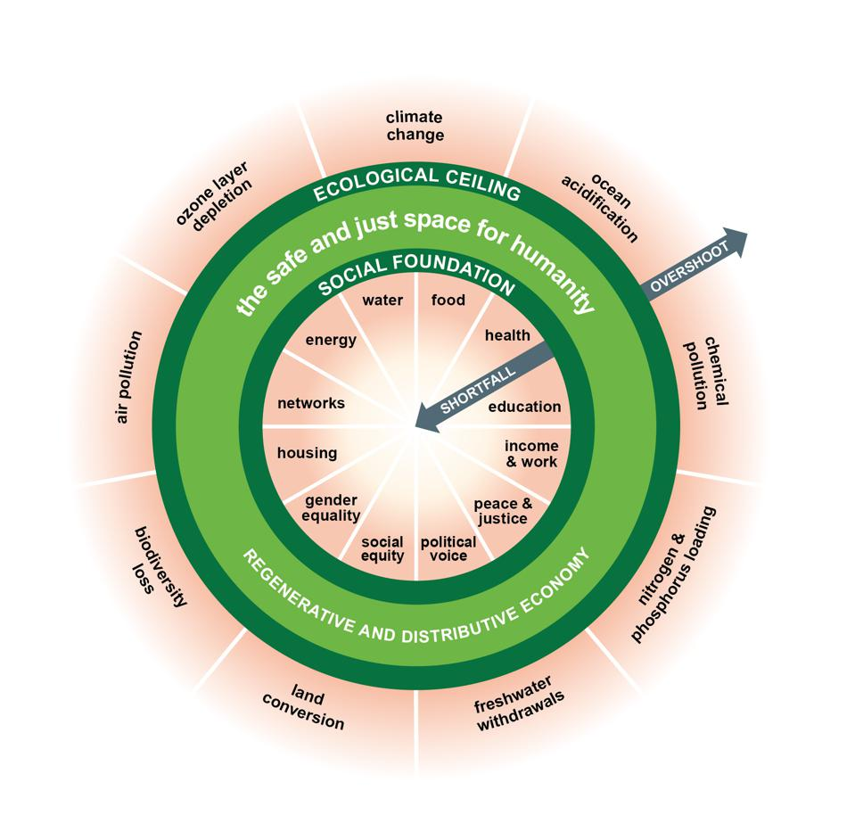 An economic model shaped like a doughnut which balances the needs of humanity and planet