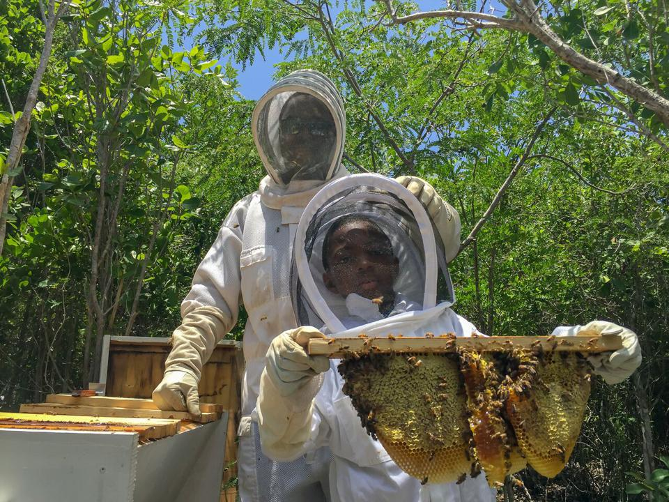 young boy with bee hive