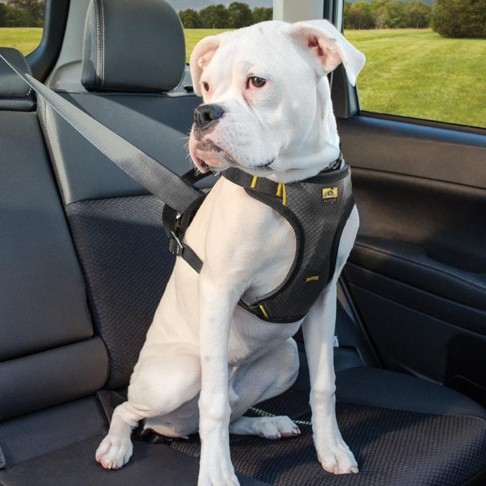 Kurgo Impact car harness for dogs