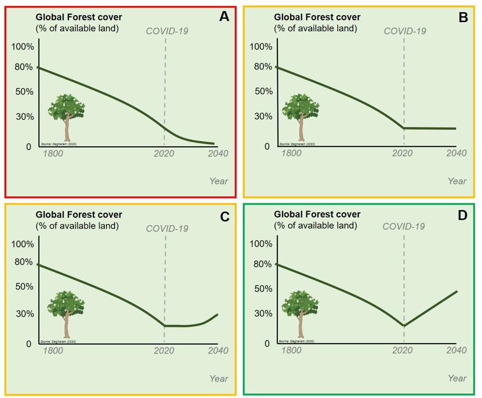 Potential pathways for global forest cover, based on four possible COVID-19 policy scenarios.