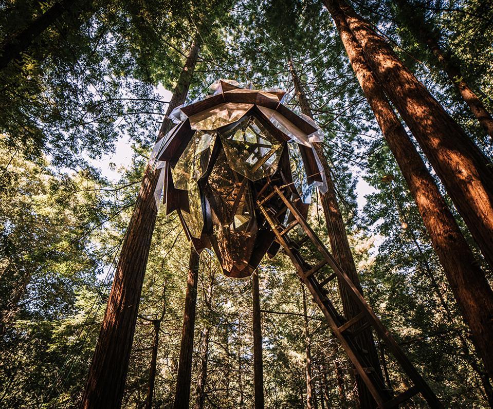O2 Treehouse/Alissa Kolom