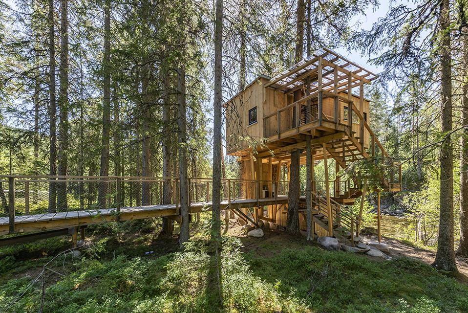 Å Camp/Nils Petter Dale