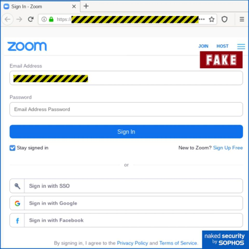 A fake Zoom login window designed to steal email passwords