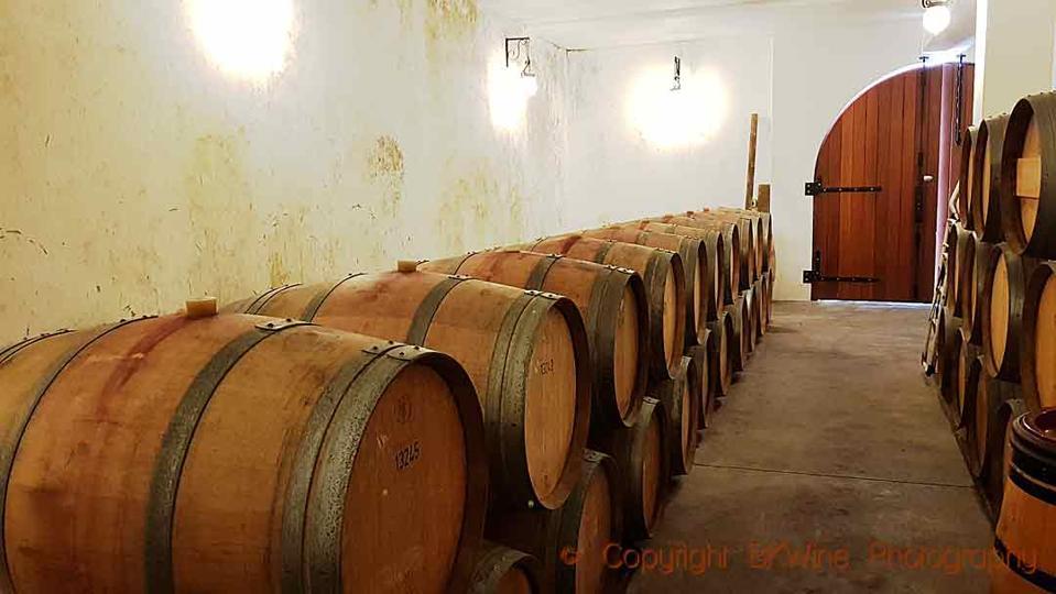Oak barrels in the cellar at Unison Vineyards in Hawke's Bay, New Zealand