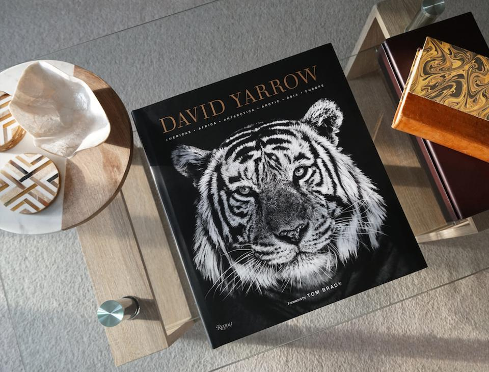 The cover of David Yarrow's 2019 released coffee table book.