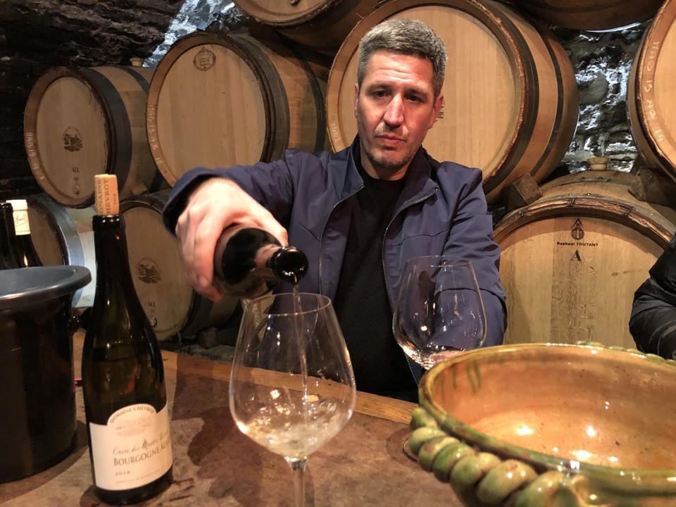 Burgundy winemaker pours white wine, wine cellar, French wine