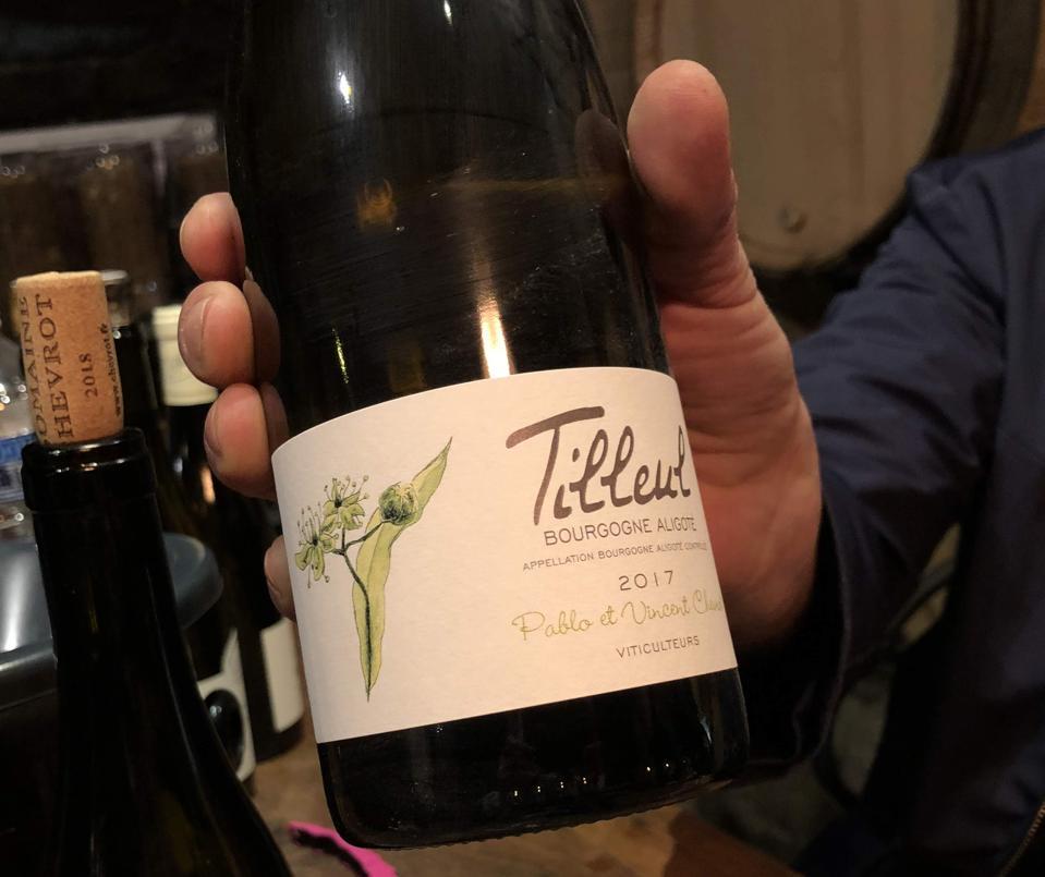Burgundy white wine, wine tasting in a French cellar
