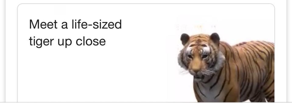 Google Animals 3D Meet a tiger
