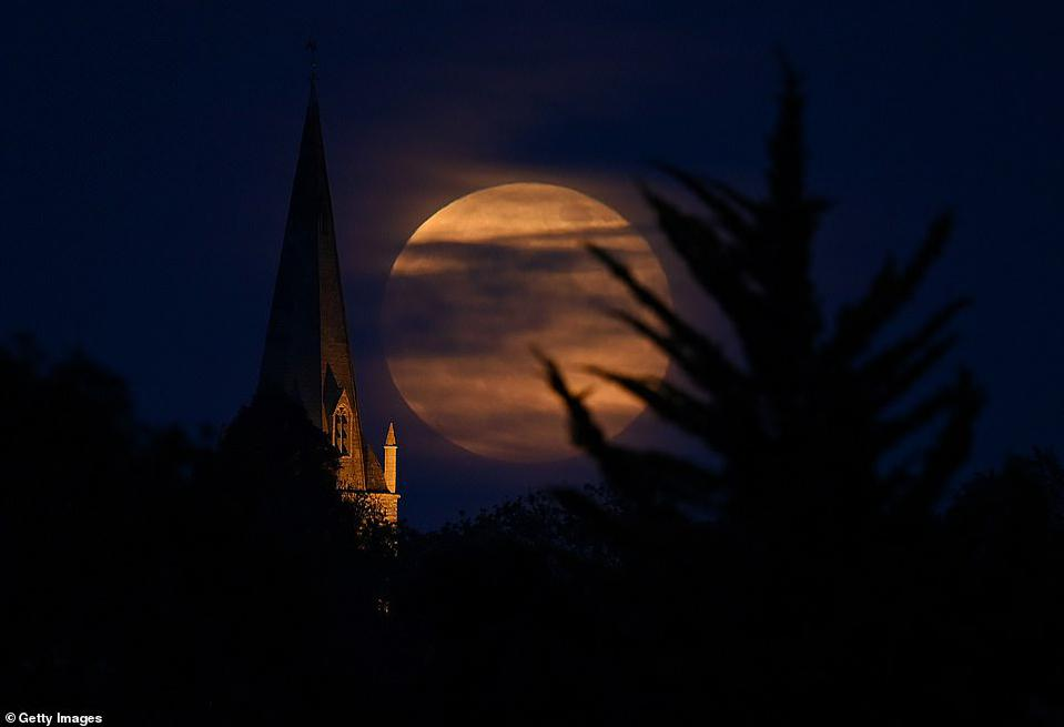 Flowe Moon raises in Northamptonshire