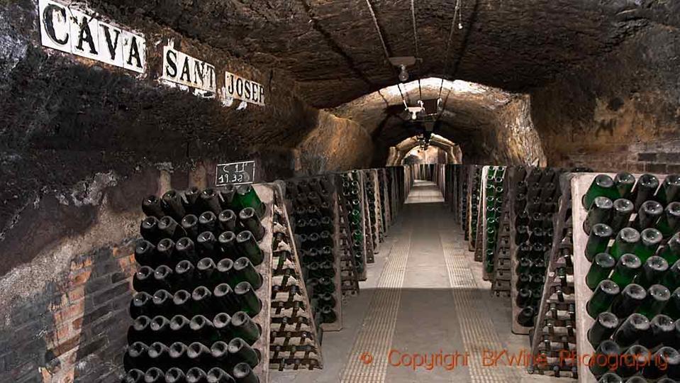 Bottles of cava in an underground cellar in Catalonia, Spain