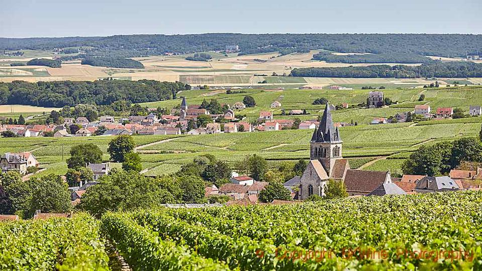 Vineyards and a village in the Champagne region in France