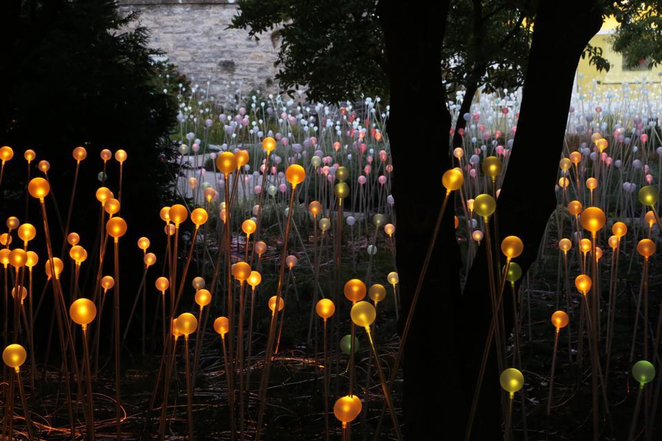 #1 Field of Light, Precedent image.