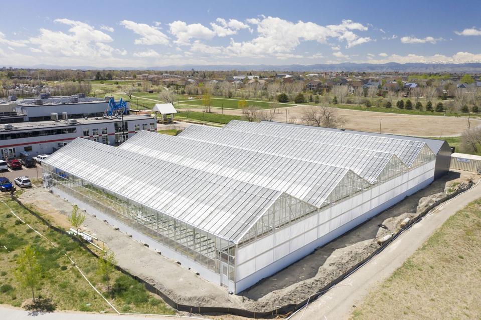 Gotham Greens' Colorado greenhouse will help add 30 jobs to the region.