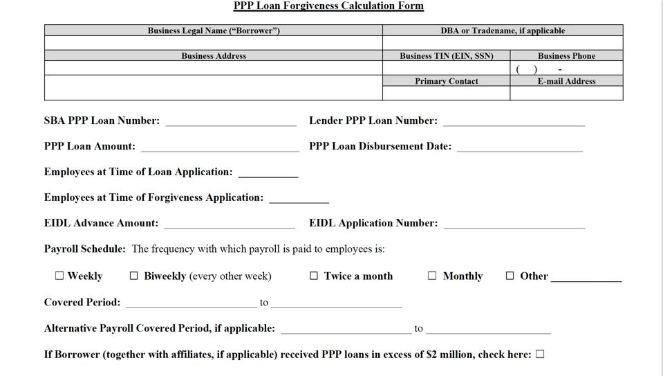 Beginning of PPP Loan App